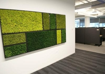 moss accent wall
